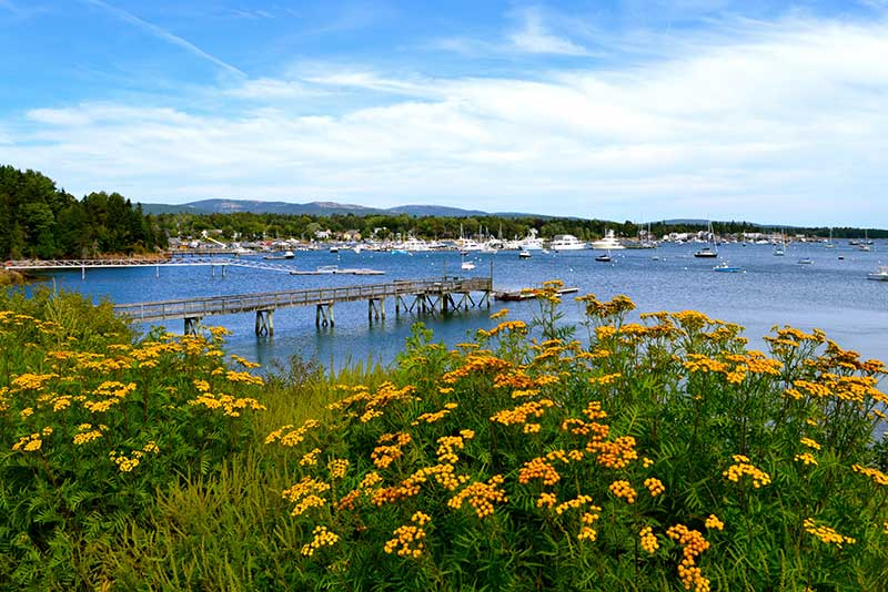 Visit Acadia - Southwest Harbor, Maine
