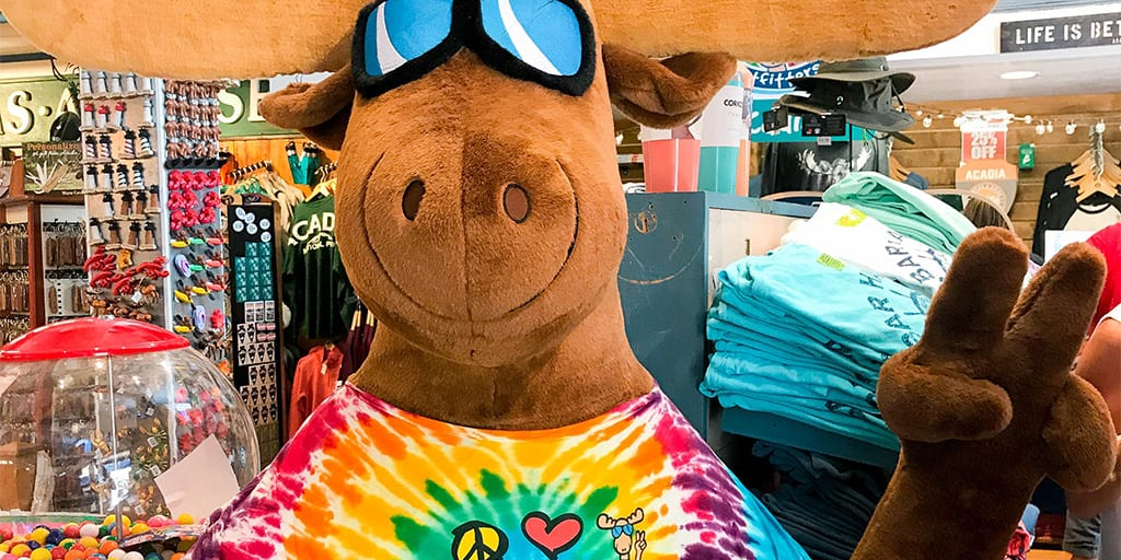 Cool as a Moose in Bar Harbor, Maine