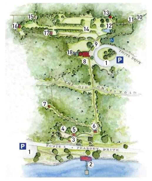 Thuya Garden Map