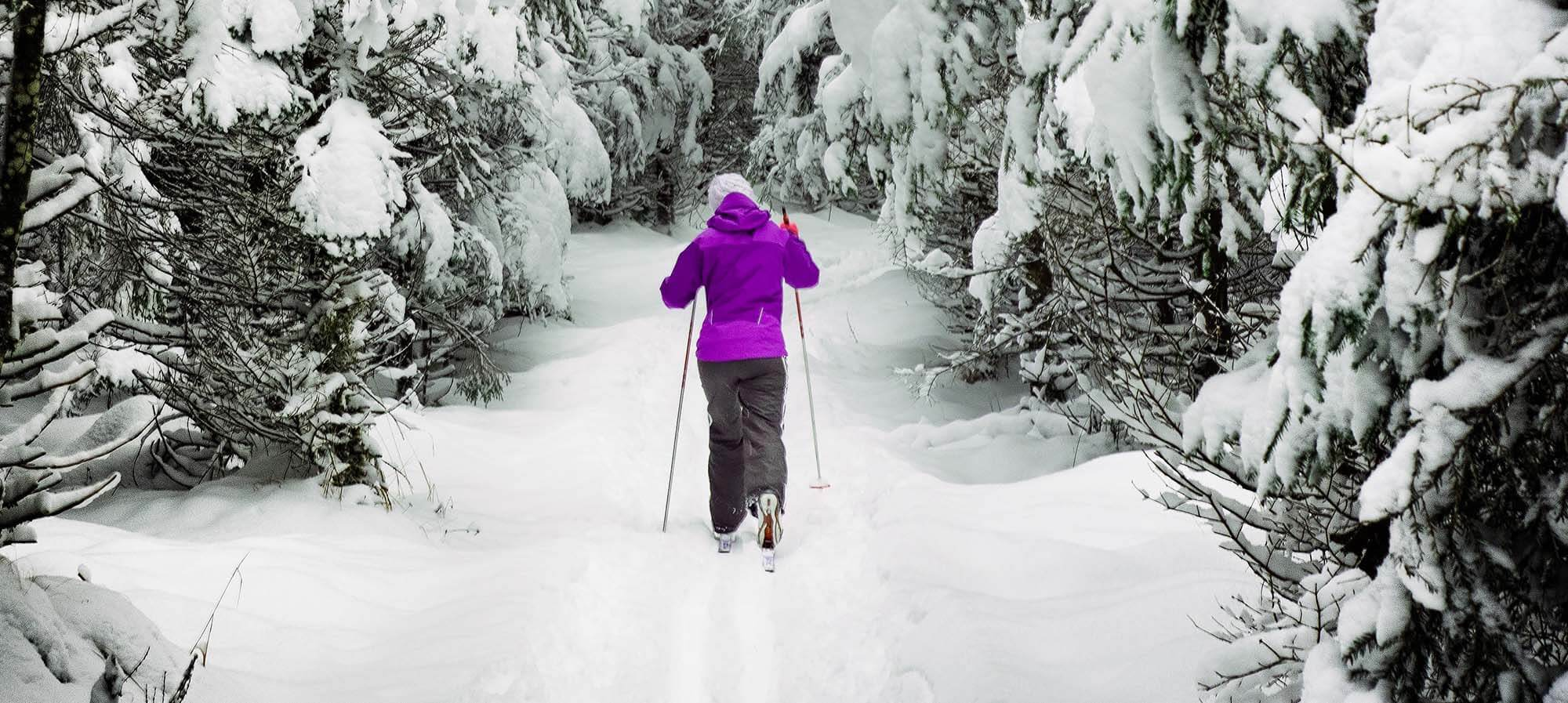 Cross Country Skiing in Acadia National Park