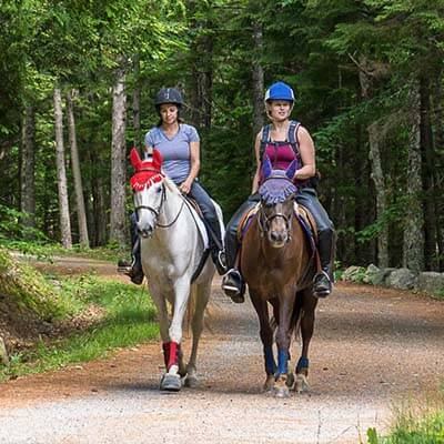Horseback Riding in Acadia National Park